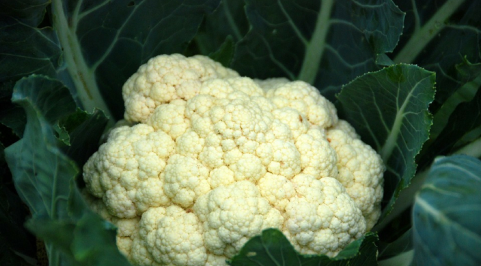 How Cauliflower Can Help You Improve Your Hair loss Issues