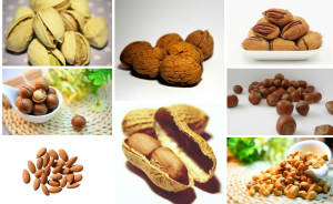 8-nut-butters-for-weight-loss-in-dubai